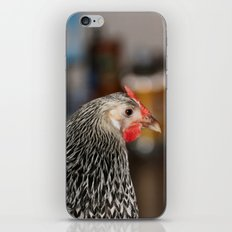 Jacket The Silly Chicken iPhone & iPod Skin