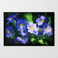 Canvas Print featuring bluest ones by Ioana Stef
