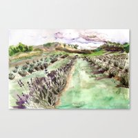Purple up over the hills Canvas Print