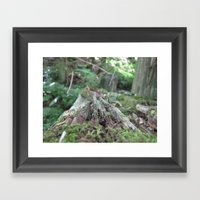 Log In The Woods Framed Art Print