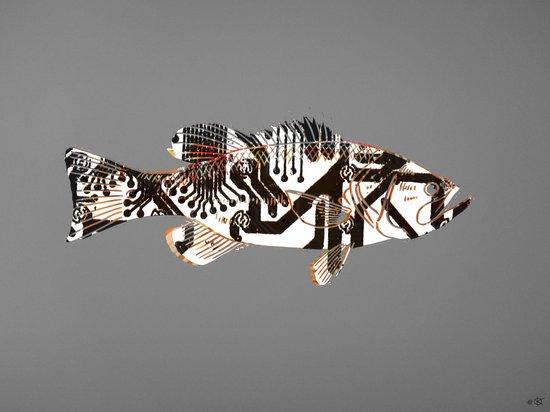 Digital Fish 2 Art Print