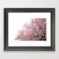 Framed Art Print featuring Cherry Blossoms by 2sweet4words Designs