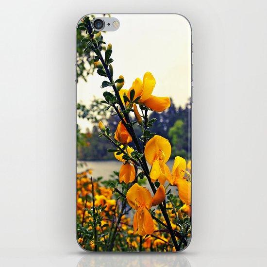 Rainy day flowers iPhone & iPod Skin
