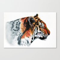 Sumathra Tiger Canvas Print