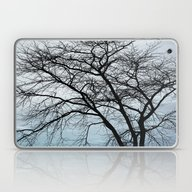 Naked Tree Laptop & iPad Skin