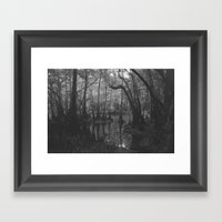 Florida Swamp Framed Art Print