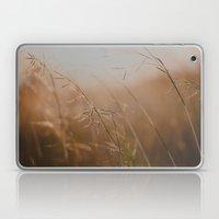 Golden Sun Laptop & iPad Skin