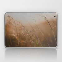 Golden Sun Laptop & iPad Skin