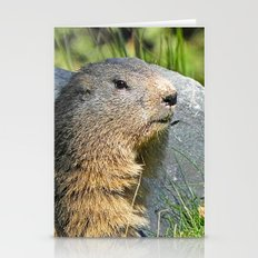 Groundhog Stationery Cards