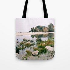 Pfeiffer Beach Tote Bag