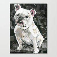 Winnie The Bulldog Canvas Print