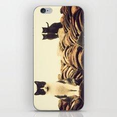 gatos en el tejado iPhone & iPod Skin