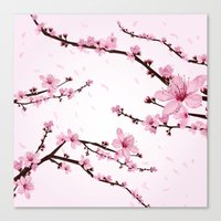 Cherry Blossoms Canvas Print