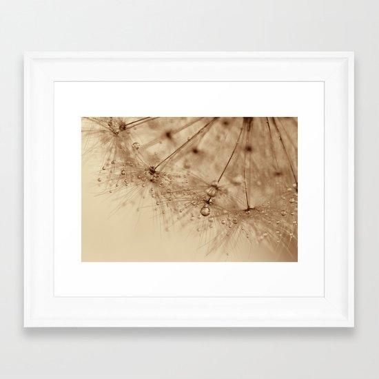 droplets of gold - dandelion Framed Art Print
