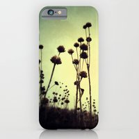 walking dead iPhone & iPod Cases featuring Walking Dead by Olivia Joy StClaire