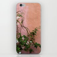 Wall Flower iPhone & iPod Skin