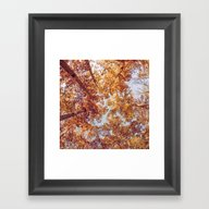 Autumn Up Framed Art Print
