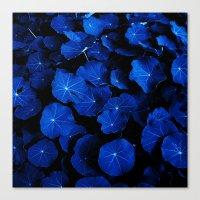 blue leafs XIV Canvas Print