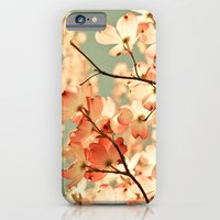 photography iPhone & iPod Cases featuring Pink by Olivia Joy StClaire