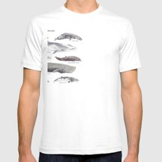 Whales Mens Fitted Tee SMALL White