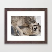 Acupuncture - Timber Wol… Framed Art Print