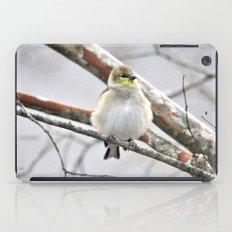 Winter Bird  iPad Case