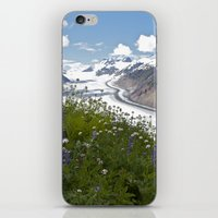 Glacial Flowers iPhone & iPod Skin