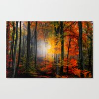 Light Colors Canvas Print