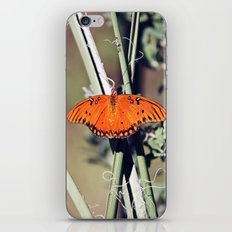 Orange Butterfly iPhone & iPod Skin