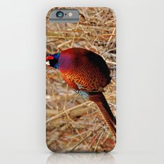 Pheasant iPhone 6s Slim Case