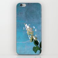White Hydrangea iPhone & iPod Skin