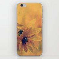 Perennial Sunflower, H. … iPhone & iPod Skin