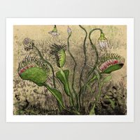 Venus Flytrap Art Print
