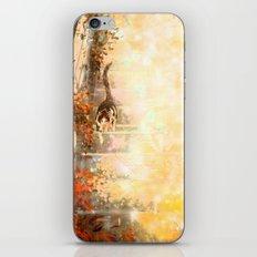 Cat's Stroll iPhone & iPod Skin