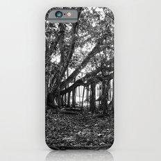 Everglades. iPhone 6s Slim Case