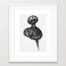 Mushroom marrow Framed Art Print