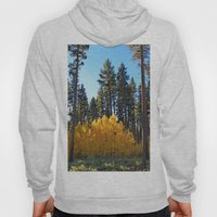 Fall Foliage Hoody