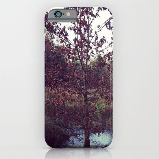 Autumn Tree iPhone & iPod Case