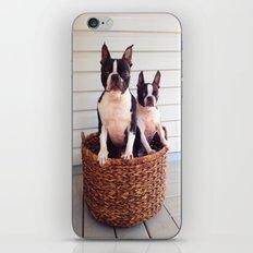 Basket Cases iPhone & iPod Skin
