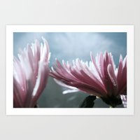 Flowers_Delicates Series Art Print