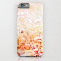 Daucus Carota iPhone 6 Slim Case