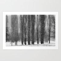 Snowy Forest Art Print