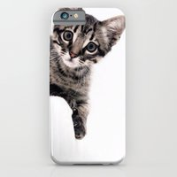iPhone & iPod Case featuring Janine, a beautiful cat by Ylenia Pizzetti