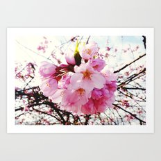 The Reason for Spring Art Print
