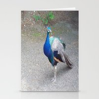 Peacock Suit Stationery Cards