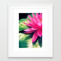 Framed Art Print featuring Waterlily by Shawn King