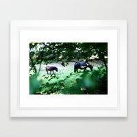 Pasture Through the Wood Framed Art Print