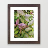 leaves evolved 2 Framed Art Print