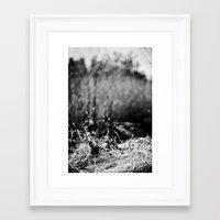 nesting grounds. Framed Art Print