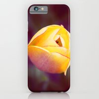 iPhone & iPod Case featuring Romance by Shannon Marie